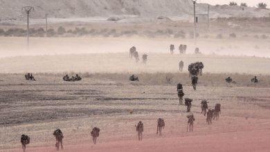 Photo of عن عملية نبع السلام والسيطرة على النفط السوري -مقالات مختارة-
