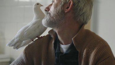 Photo of الإنسان والطبيعة في الوثائقي البيئي/ وديعة فرزلي