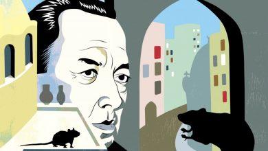 صورة ألبير كامو… الكاتب «المتمرّد» الذي استشرف «طاعون» الأزمنة الحديثة/ سعيد محمد