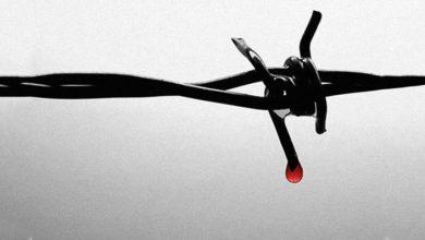 صورة أدب السجون.. نزهة قسريّة خارج الحياة/ اعداد عماد الدين موسى