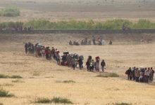 """صورة """"قماش أسود"""" للمغيرة الهويدي: لما أطبق داعش على الرقة/ سومر شحادة"""